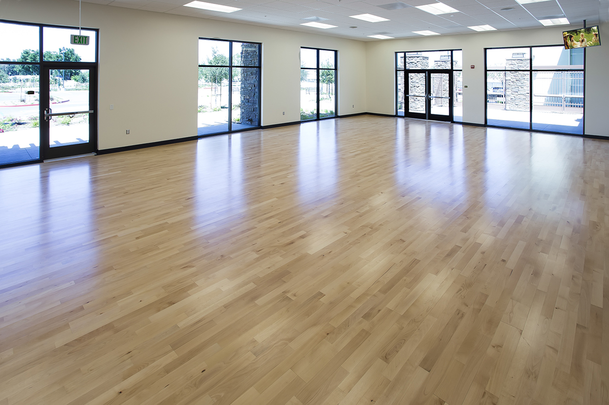 The Multi-use Fitness and Dance Room