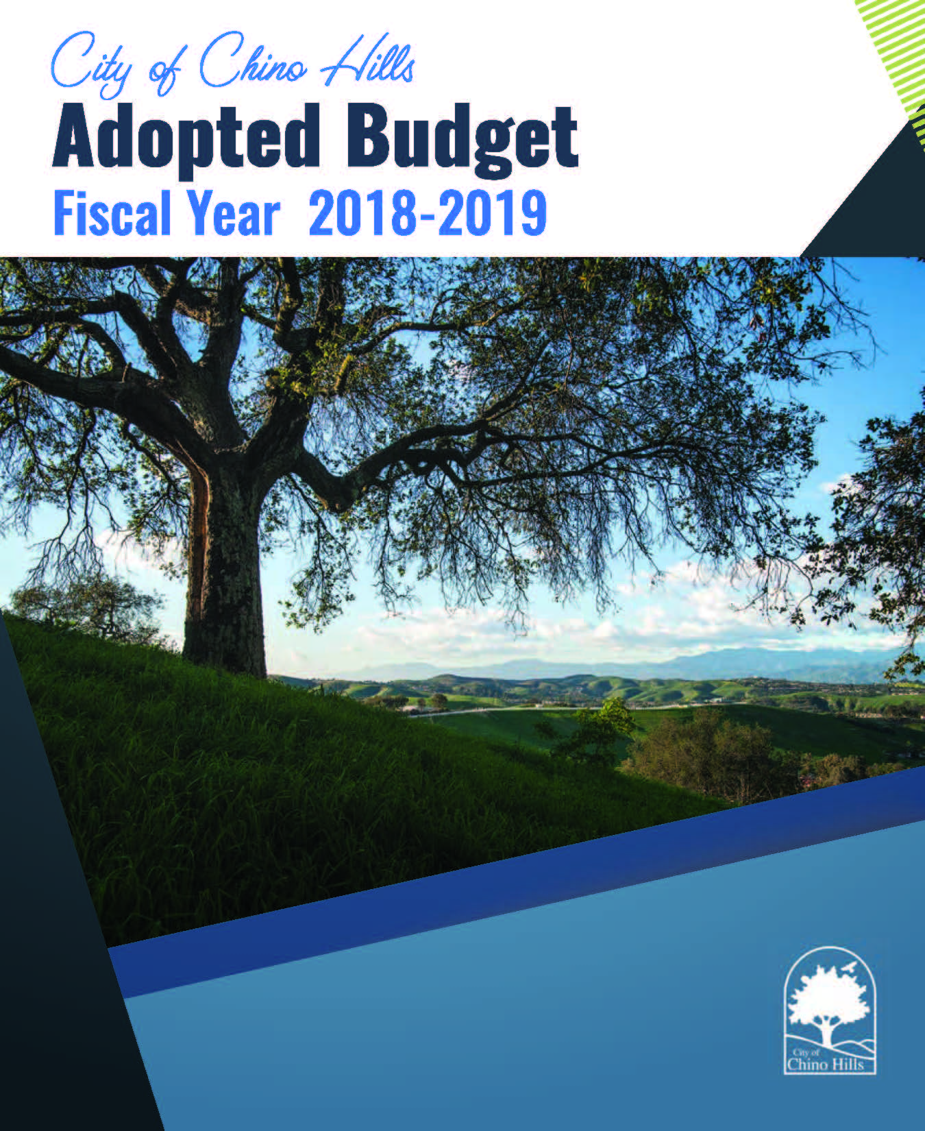 photo of adopted budget book cover